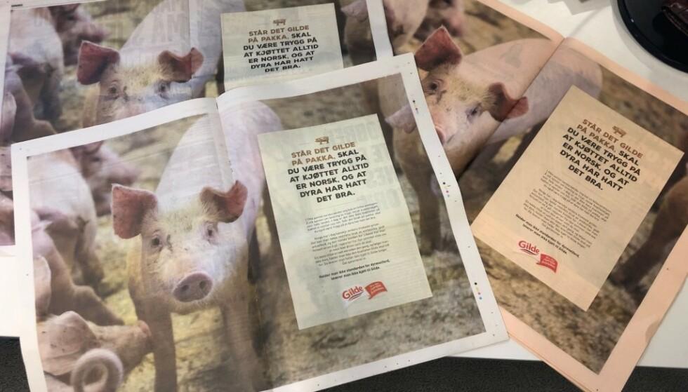 VIL UT: Til tross for at grisenes artstypiske behov tilsier at de bør ha tilgang på uteareal, lever mer enn 99 prosent av grisene innendørs hele livet, skriver innsenderen. Etter filmen Griseindustriens hemmeligheter, svarte Nortura med denne annonsekampanjen. Foto: Dagbladet