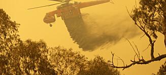 Vitenskapelig skrik om klimakrisen