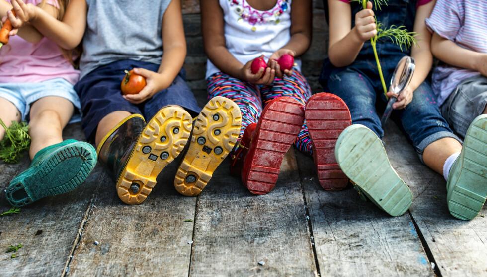 EN GOD START: - Det er ingenting som opptar meg mer enn at barn skal være trygge i barnehagen. Barnehagen skal bidra til å gi alle barn en god start på livet, skriver kronikkforfatter Anne Lindboe. Foto: Shutterstock / NTB Scanpix.