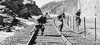 De fremmede som kjempet mot Hitler i Narvik