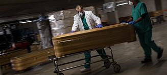 Dødsraten stiger i verden