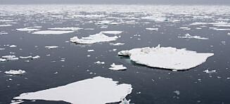 Livet i iskanten trenger beskyttelse
