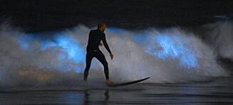 Selvlysende bølger forbløffer surfere