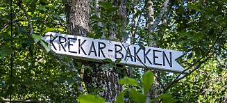 Krekar-krangel på Kongsvinger