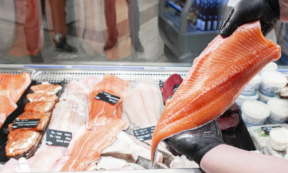 FAST FISK: Laksen er produsert i Norges første lukkede, landbaserte anlegg for slakteferdig laks. Foto: Nordic Aquafarms