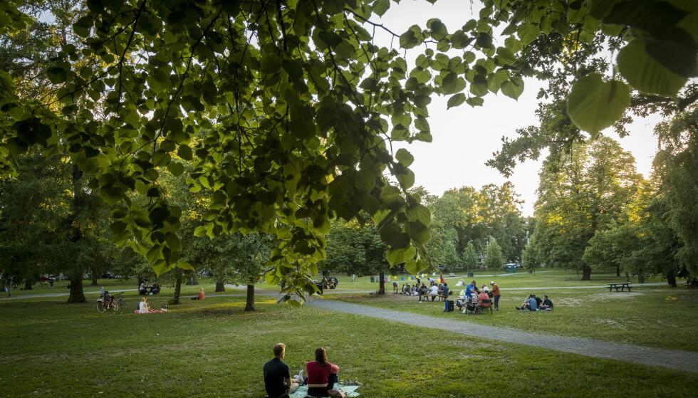 Oslo  20180604. Stemningsbilde av Sofienbergparken i Oslo mandag kveld. Foto: Heiko Junge / NTB scanpix