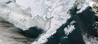 Sjøisen i Beringhavet på rekordlavt nivå