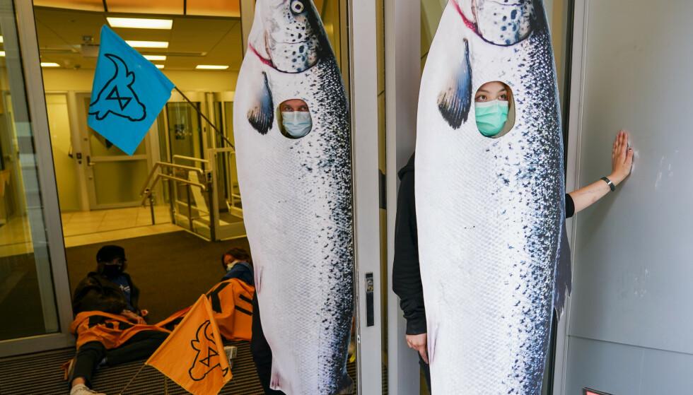 HAR LIMT SEG FAST: Demonstranter fra Animal Rebellion har limt seg fast i Nærings- og fiskeridepartementet. Foto: Gorm Kallestad / NTB