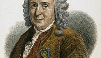 BOTANIKER: Den svenske botanikeren Carl von Linnè (1707-1778) er hedret med en benk i Botanisk hage i Oslo. Det liker det rødgrønne flertallet i bydelen dårlig. Foto: NTB