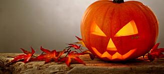 Derfor feirer vi halloween