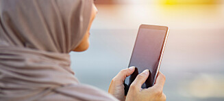 Kalte muslimer «hijabhorer» - dømt