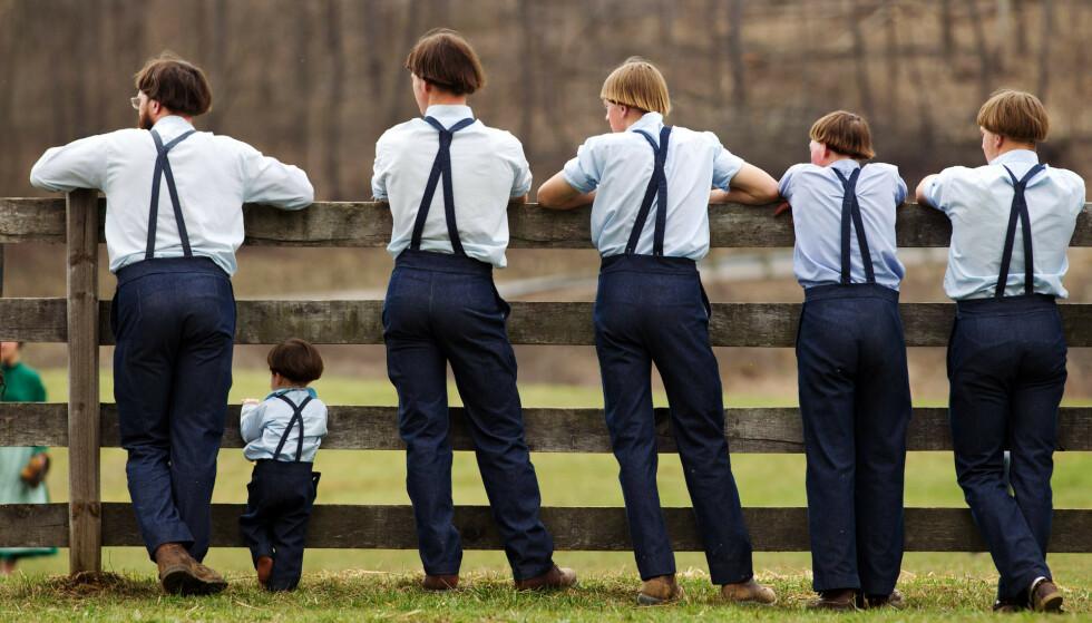 LUKKET: Det lukkede Amish-folket bor spredt over store deler av USA, og er en av de raskest voksende religionene i landet. Illustrasjonsfoto: AP Photo/Scott R. Galvin/Scanpix