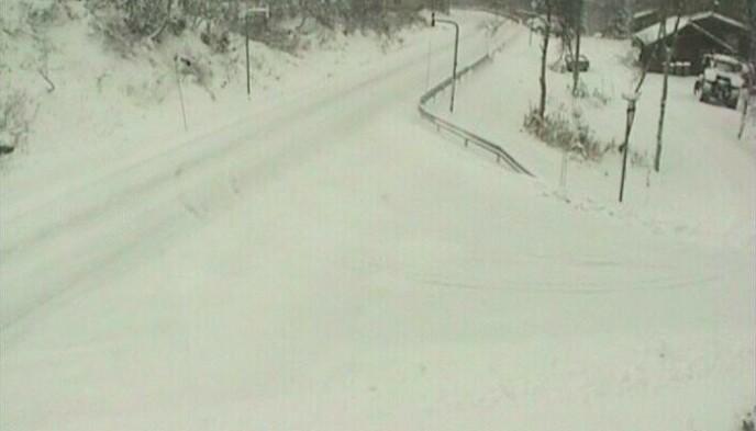HOVDEN: På Hovden har det kommet 18 centimer snø. Foto: Statens Vegvesen