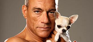 Van Damme reddet norsk valp