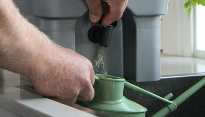 PLANTENÆRING: Væsken som samler seg i bunnen er ypperlig til å vanne plantene med.