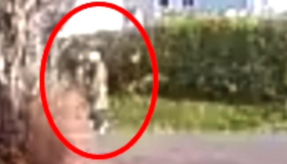 ETTERLYSER PERSON: Politiet etterlyser en person som var i det aktuelle området, da en voldtekt av et barn under ti år skal ha funnet sted i Trondheim fredag. Foto: Politiet