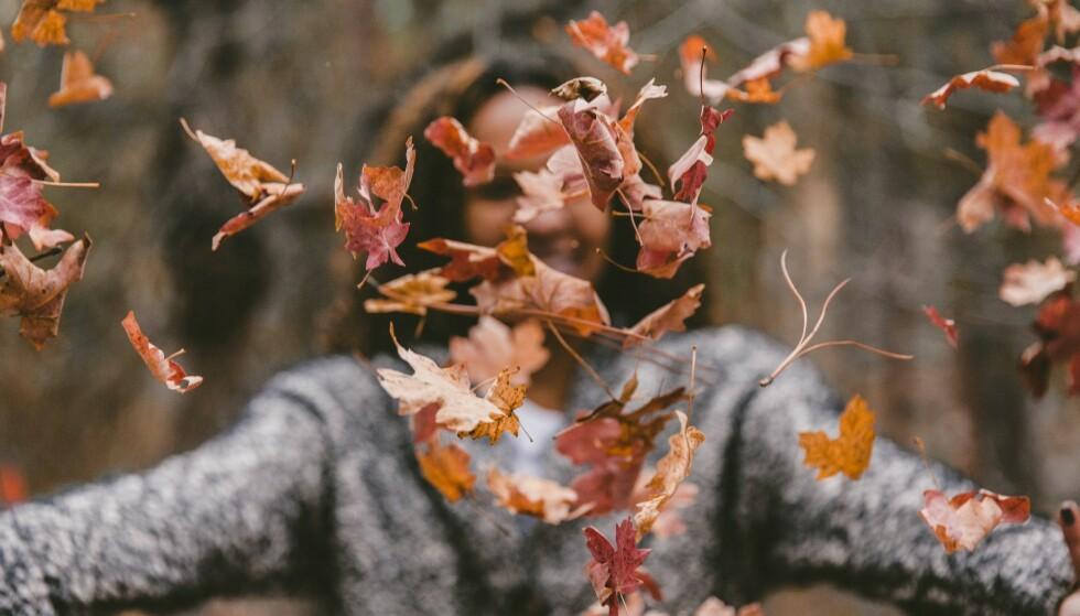 Hos Get Inspired har høstens store salg begynt.