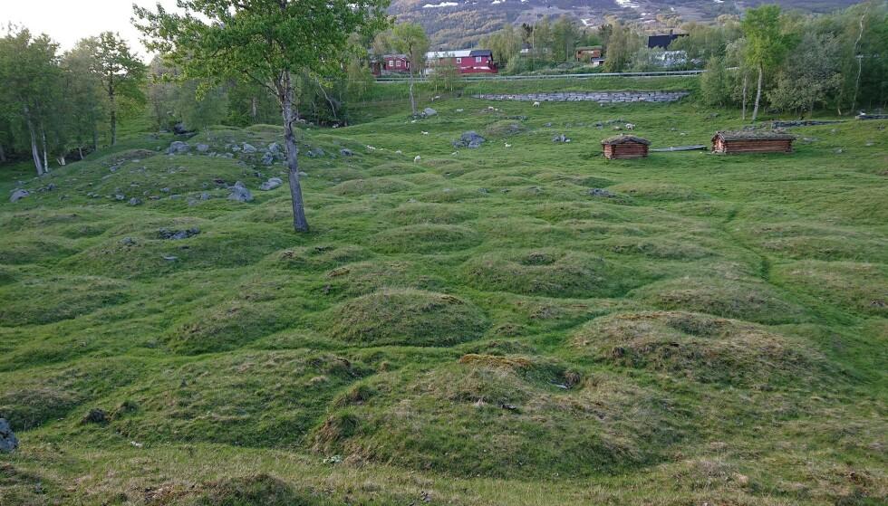 BERØMT: Gravfeltet i Vang består av over 900 store og små gravhauger og røyser og er Nord-Europas største gravfelt fra jernalderen. . Foto: Oppdal kommune