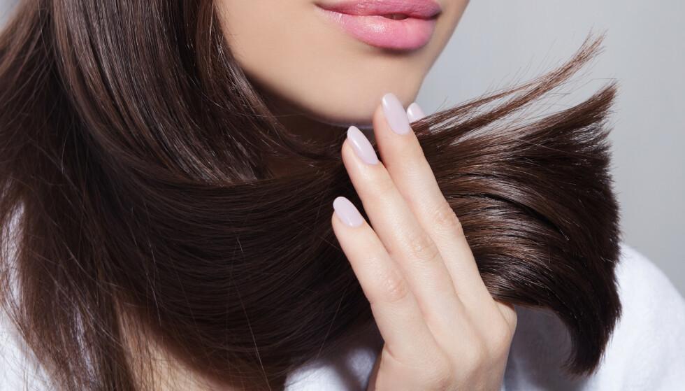 TESTET: Et knippe KK-lesere, som alle har slitt med tørt og skadet hår, fikk teste hårpleieserien Gliss Total Repair. Resultatene kan du se i denne saken. FOTO: NTB