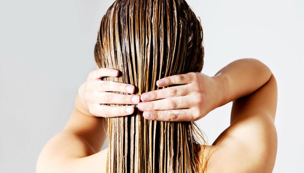 HÅRPLEIESERIE: Gliss' Total Repair-serie består av sjampo, balsam og hårkur som er skreddersydd for skadet hår. FOTO: NTB