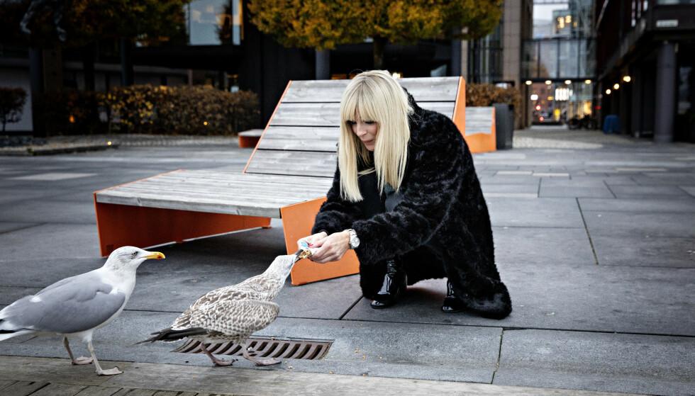 KVALM: Den slibrige e-posten hun fikk, har hun lite til overs for. Måkene på Aker Brygge vekket imidlertid begeistring hos Sørland, som matet dem med en kjeks hun fant i veska. Foto: Nina Hansen / Dagbladet