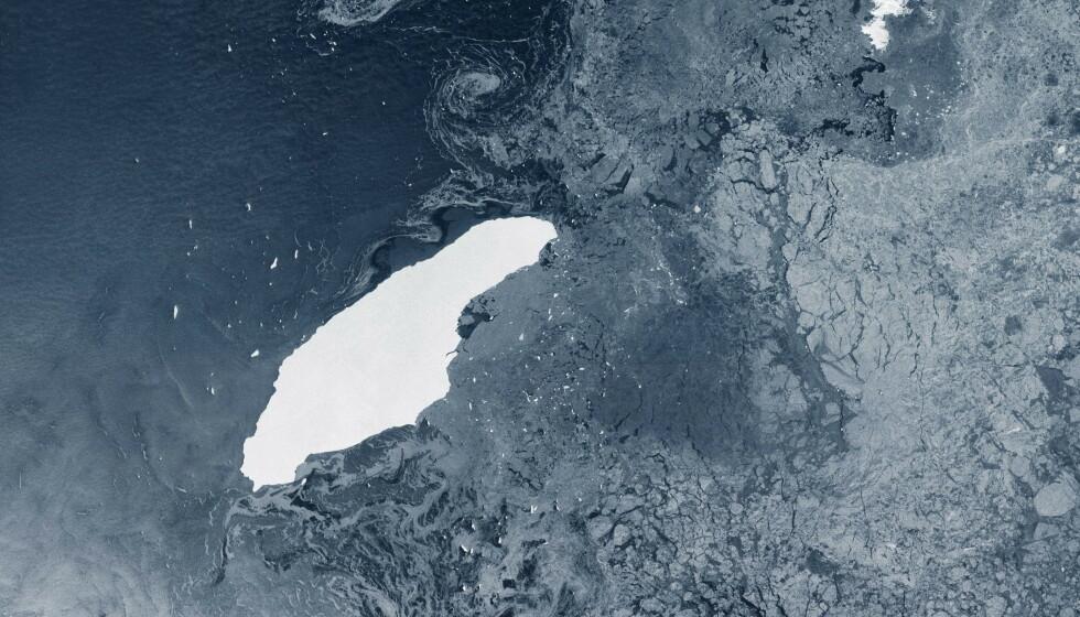 ENORMT: Isfjellet - på størrelse med tidligere Akershus fylke - beveger seg mot en øya Sør-Georgia. Foto: Handout / AFP