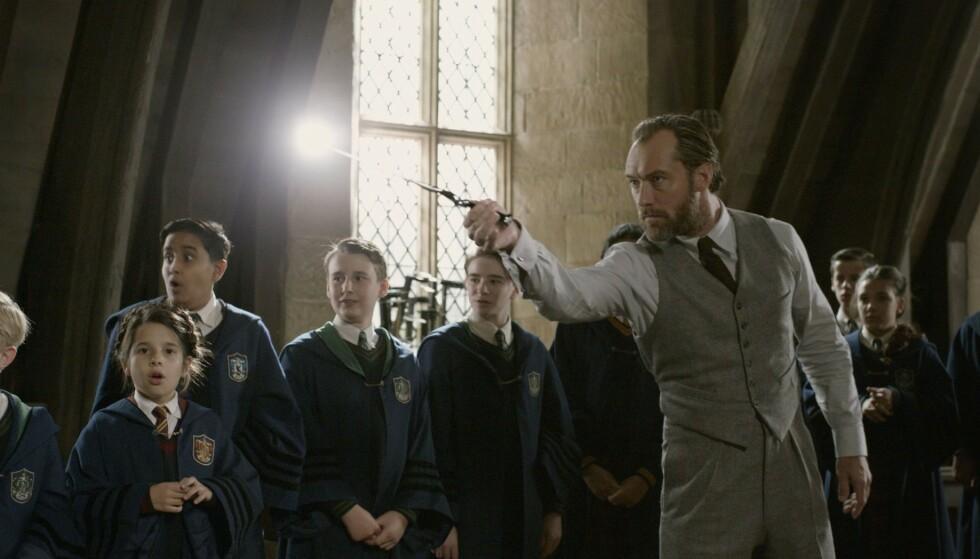 HUMLESNURR: Jude Law i rollen som Albus Humlesnurr. Foto: Warner Bros/Kobal/REX
