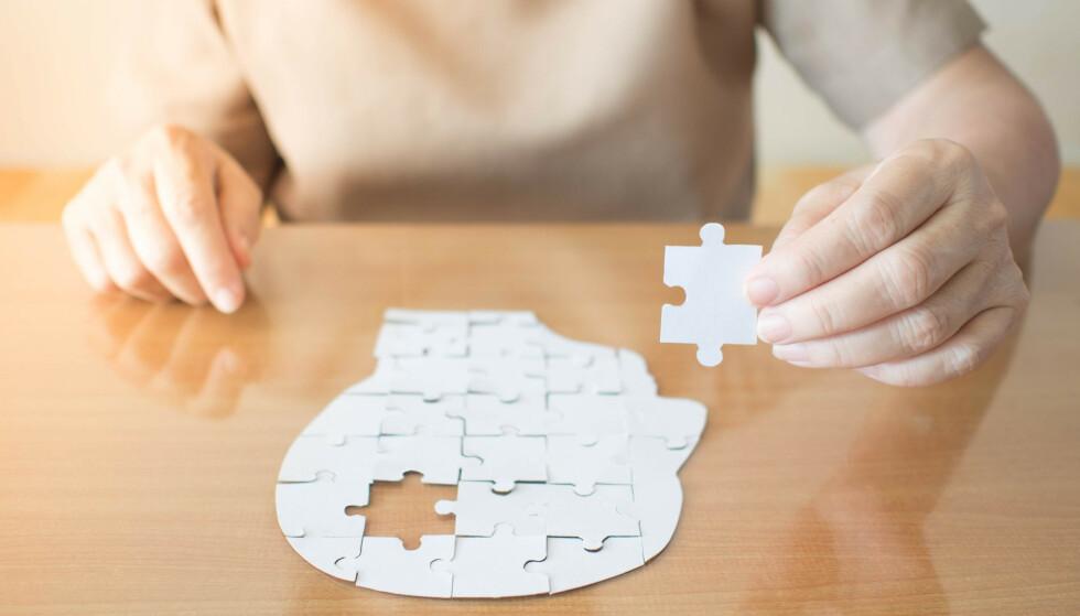 UTDANNING: Stadig viser forskning på demens og Alzheimers sykdom at å utfordre hjernen med ny lærdom og kunnskap, kan være forebyggende uansett alder. Foto: NTB Scanpix