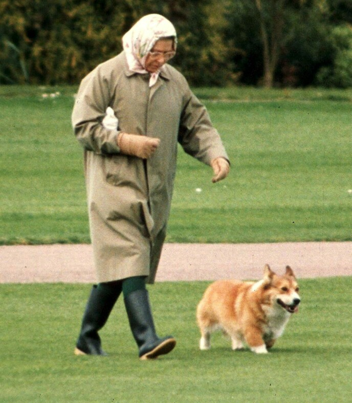 PÅ TUR: Dronning Elizabeth går tur med en av corgiene sine utenfor Windsor slott i 1994. Foto: David Hartley/REX/NTB