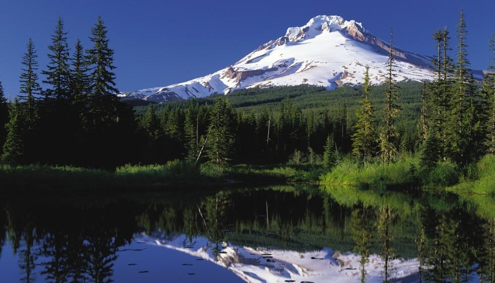 POPULÆRT: Mount Hood i Oregon ruver 3429 m o.h. og er en aktiv vulkan. Like fullt er fjellet et yndet utfartsmål for turgåere og skiløpere. Prisbelønt bilde. Foto: Federal Highway Administration / Wikimedia Commons