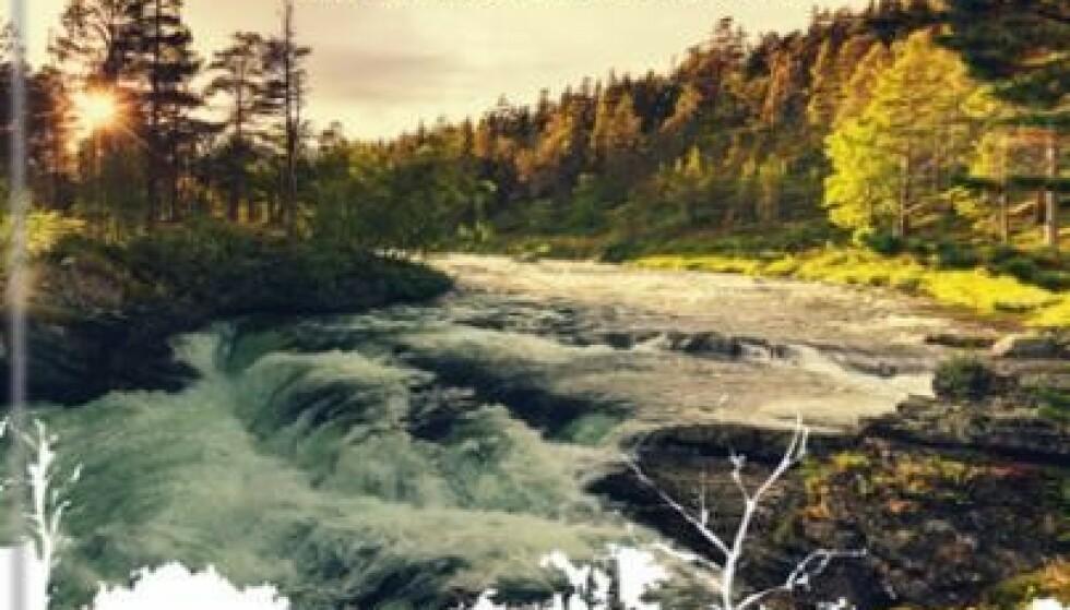 Tur og friluft - her er gavetipsene som får deg til å lengte ut i naturen igjen