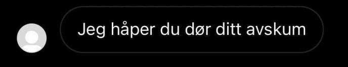 HETS: Martine Lunde har sendt noen av kommentarene til Dagbladet. Foto: Privat