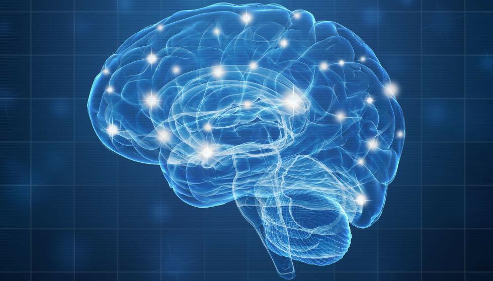PASS PÅ: Hjernesykdommene har mer diffuse symptomer, slik at det kan ta lang tid å finne ut hva som er galt. I artikkelen får du gode råd hvordan du holder hodet friskest mulig. Foto: NTB