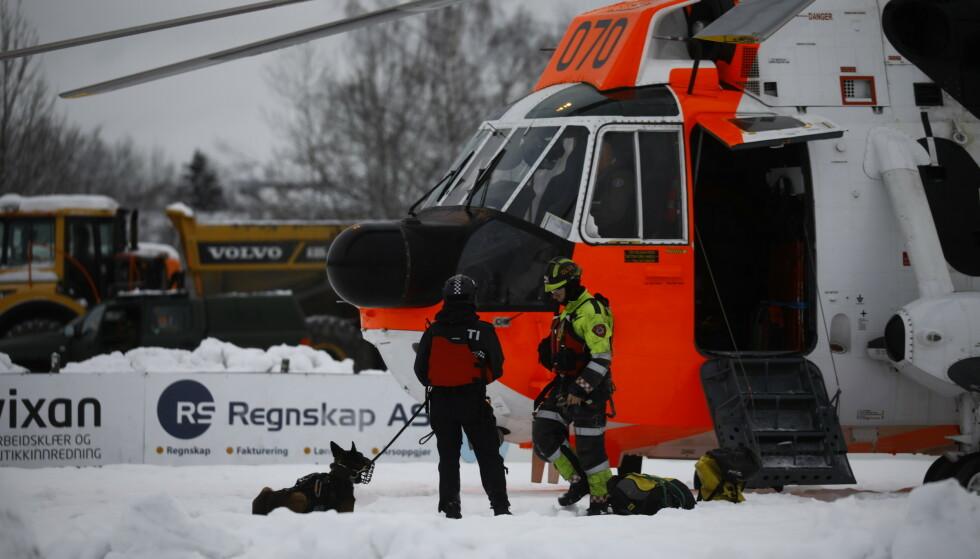 PÅ JOBB: Hundenes luktesans kan bli avgjørende i søkearbeidet etter de savnede. Foto: Frank Karlsen / Dagbladet
