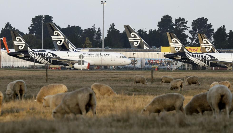 STRENGT: New Zealand har hatt strenge innreiseregler siden pandemien startet i mars i fjor. Foto: Mark Baker / AP Photo / NTB