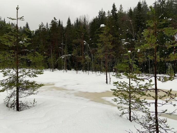 VIPP NED: På vei inn til Vangen tordag i denne uka. Foto: Geir Ramnefjell