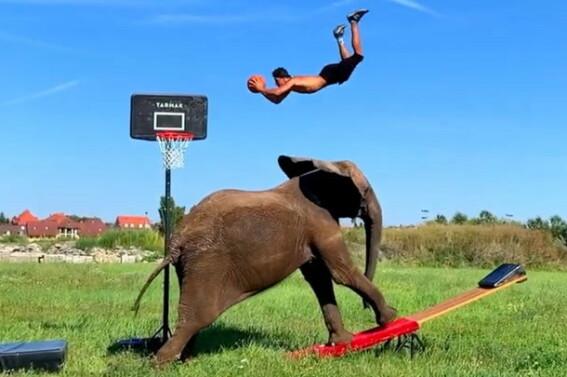 Image: Halsbrekkende stunt