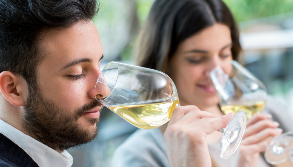 INTERESSANT BURGUND: Det er liten tvil om at det kvalitativt er den desidert mest interessante nyhetslanseringen i år, men det er ikke billig, skriver Dagbladets vinekspert. Foto: Shutterstock/NTB.