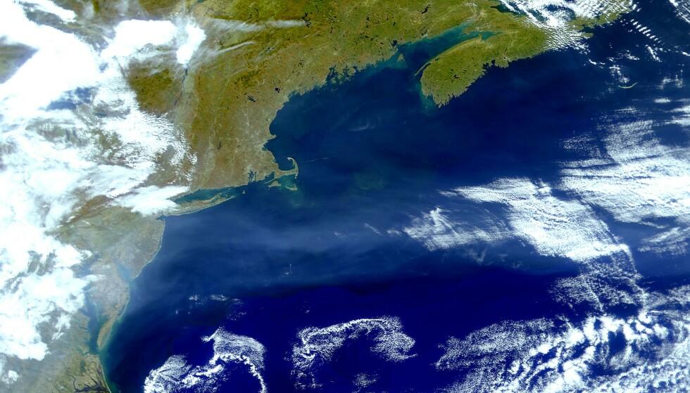 SKAPER BEKYMRING: Satellittbilde tatt av Golfstrømmen. Foto: Planet Observer / UIG / Rex / NTB