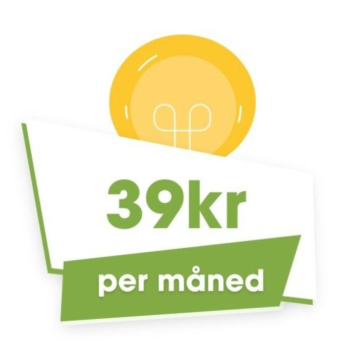ÉN PRIS FOR ALLE: Hos Klarkraft finnes det bare én avtale til kundene. Alle får strøm til selskapets kostpris pluss 39 kroner i måneden. Det er alt.
