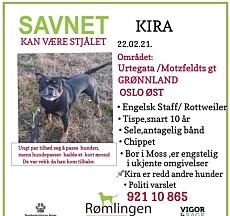 PLAKATEN: Slik så savnet-plakaten ut av Kira. Plakaten er sendt fra Line Langseth og laget av en Facebook-gruppe som heter Rømlingen.