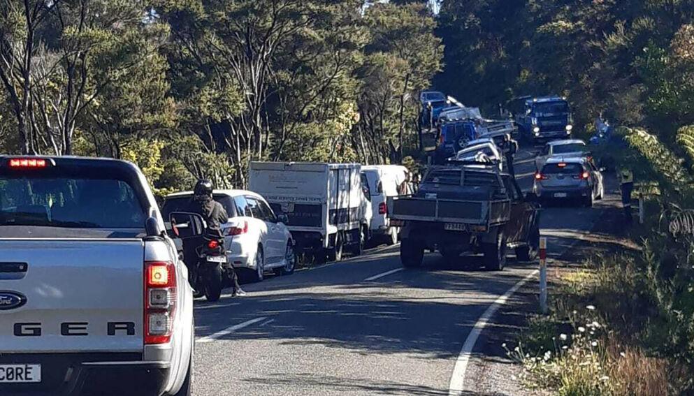 MASSEEVAKUERING: Bilder viste store køer i det folk prøvde å trekke opp i høyden i New Zealand etter kraftige jordskjelv torsdag. Foto: Mike Dinsdale / New Zealand Herald / AP