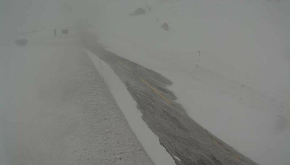 STENGT: Flere fjelloverganger er stengt eller har inført kolonnekjøring som følge av sterk vind lørdag. Her fra Tyinosen på riksvei 53. Foto: Statens vegvesens webkamera.