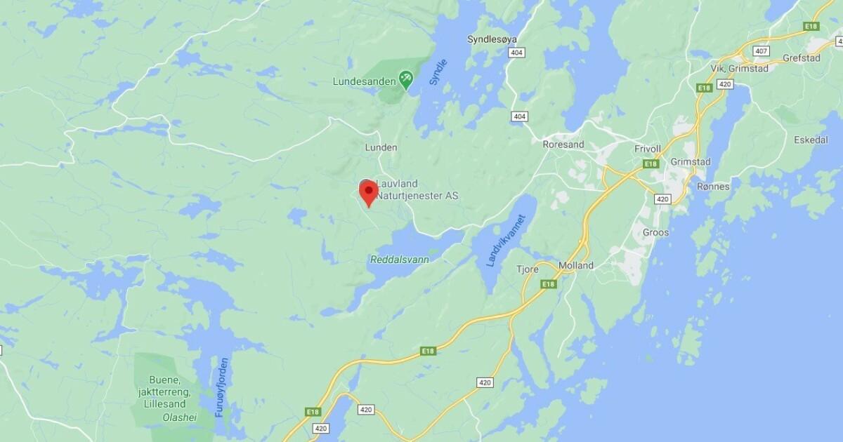 Mann i 20-åra funnet død etter skogsfest