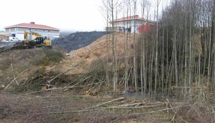 KREVDE SVAR: Naboer var uforberedt da det i april 2016 ble gravd og felt trær i ravinen mellom boligfeltene Viervangen og Ingelstun. De krevde svar på hvilke tillatelser som fantes. Foto: Privat