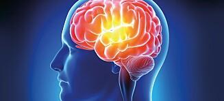 Mystisk hjernesykdom oppdaget i Canada