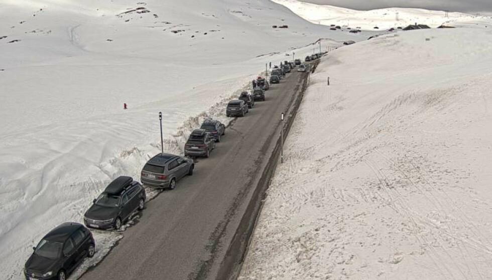 KAOS: Parkerte biler stenger Vikafjellet torsdag ettermiddag. Foto: Statens Vegvesen trafikkamera