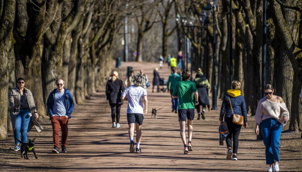 VÅRVÆR: I Oslo har det vært sol og vårlige temperaturen den siste tida, og våren returnerer allerede tirsdag, ifølge meteorologene. Foto: Ole Berg-Rusten / NTB