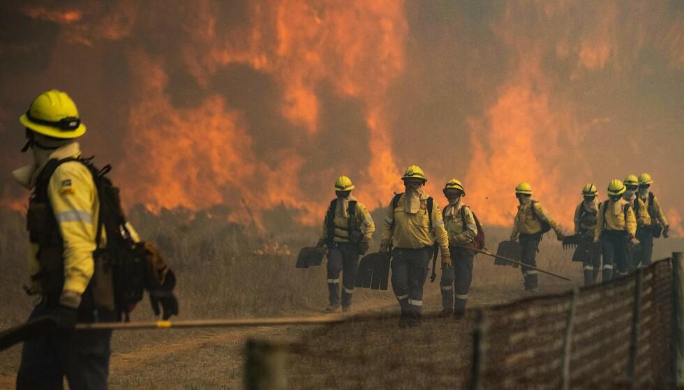 UTE AV KONTROLL: Brannmennene måtte forlate området da flammene ble for aggressive og ute av kontroll. Foto: Rodger Bosch/AFP/NTB.