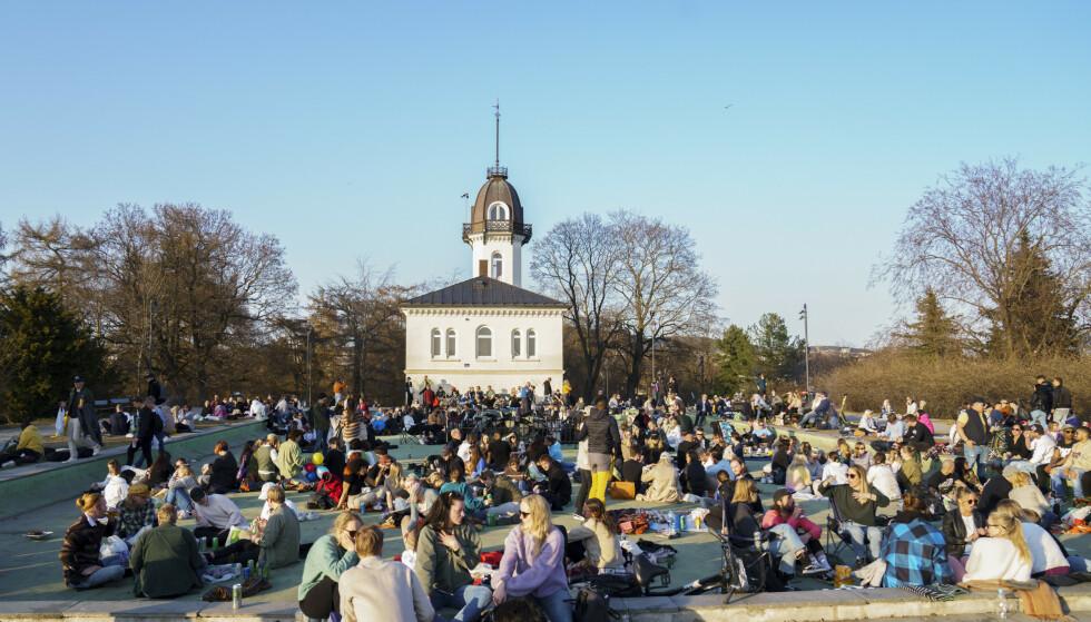 OSLO: Det var mange som trakk ut for å nyte det fine vårværet i helga. Her i en park på St. Hanshaugen lørdag kveld. Foto: Torstein Bøe / NTB